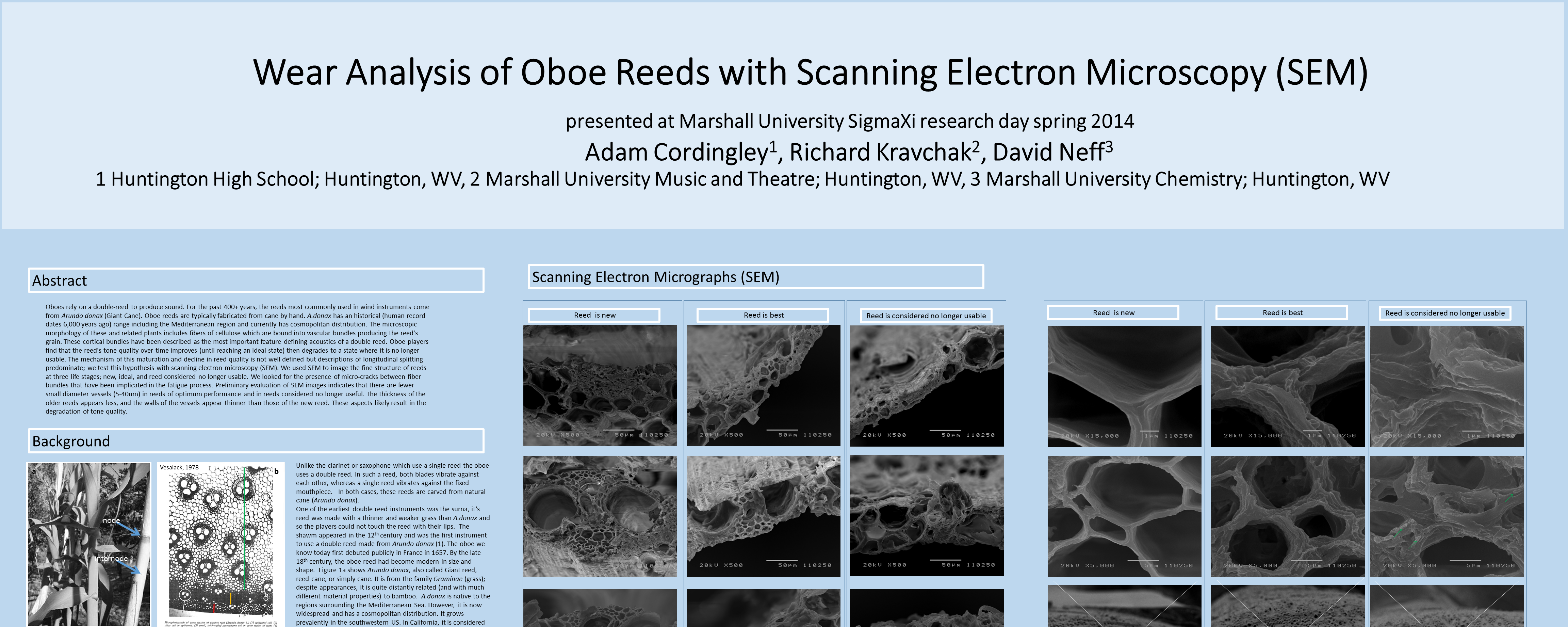 Wear Analysis of Oboe Reeds (click for poster)
